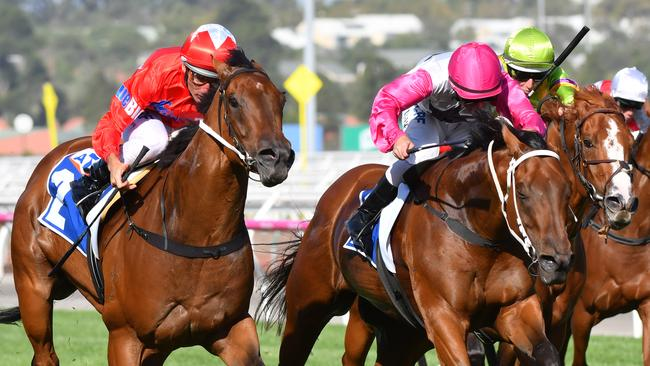 Punters have launched into Secret Agenda, left, to win the William Reid Stakes. Picture: Getty Images