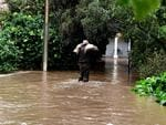 Local councilor Andrew Tilly helps sandbag a house on Fife Avenue, Torrens Park. Picture: Campbell Brodie