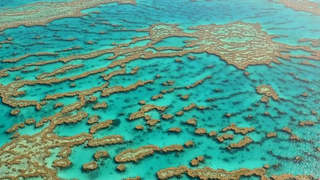 The Great Barrier Reef — a fitting name for a new Qantas Dreamliner? Picture: Beatriz Queiroz