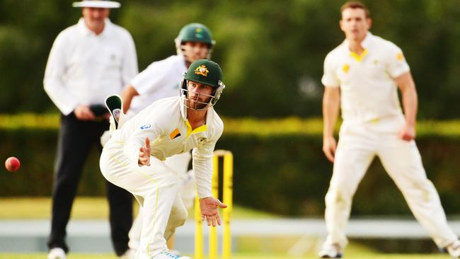 Matthew Wade is handy in the field without wicketkeeping gloves. Picture: Zak Simmonds.