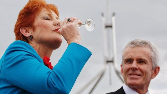 Pauline Hanson toasted Donald Trump's victory. Picture: ABC/Twitter