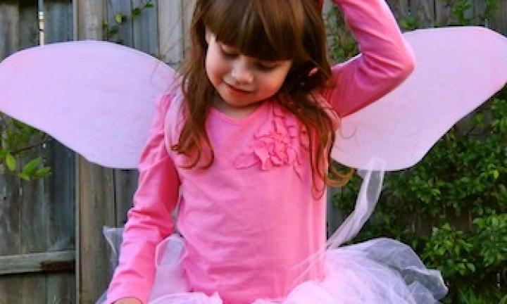 Fairy costume: dress like a fairy princess