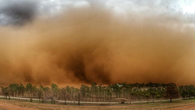 The dust storm at 4pm on Thursday at Nain, east of Freeling. Picture: Charmaine Holland