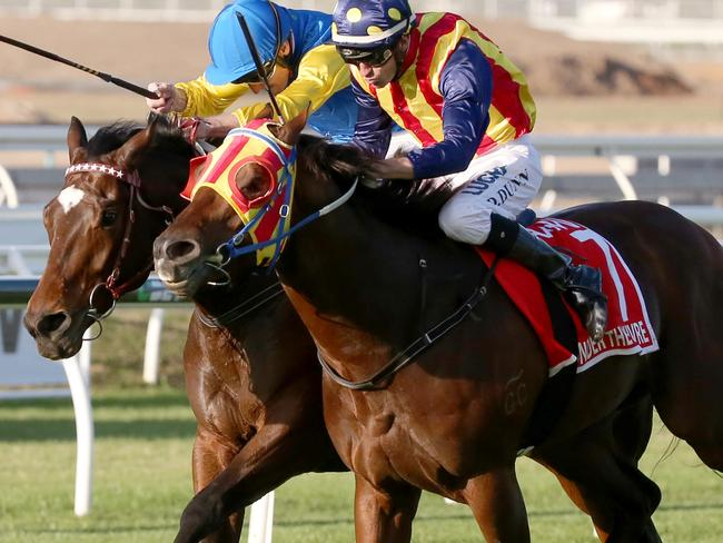 Under The Louvre and Black Heart Bart fight out last year's Stradbroke Handicap. Picture: Jono Searle