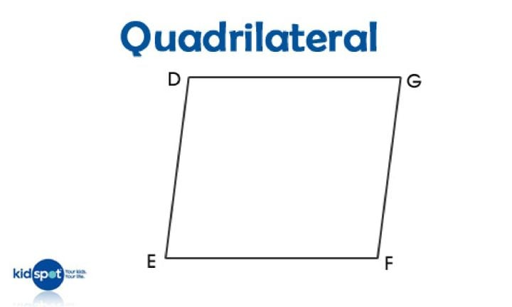 quadrilateral_476x290