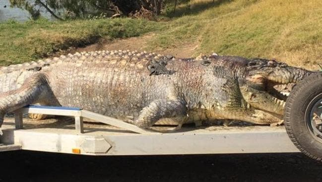 The first shot of a monster croc found in the Fitzroy River. Picture: Supplied