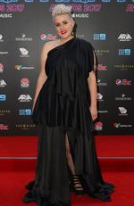 Katie Noonan arrives for the 31st Annual ARIA Awards 2017 at The Star on November 28, 2017 in Sydney, Australia. Picture: Lisa Maree Williams/Getty Images for ARIA