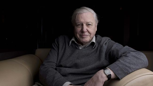 You can collect Sir David Attenborough's best nature DVDs with The Sunday Times this month.