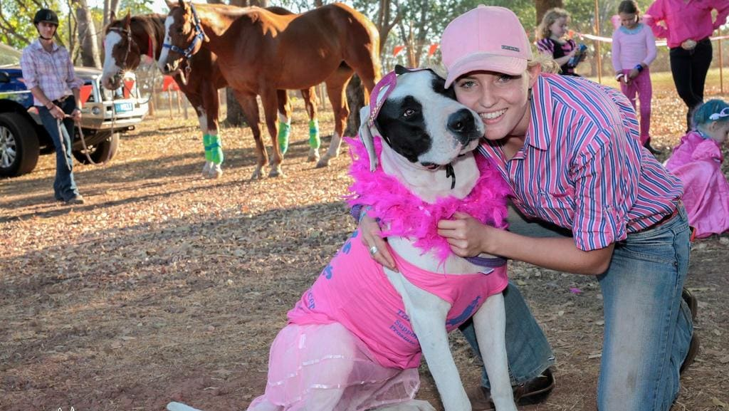 """<s1>  Suzanne Van Engelenhoven's Dane X Bull Arab named Villain was shot and killed by a neighbour </s1> <ld pattern="""" """" /> <source></source>. Picture: SUPPLIED <source></source>"""