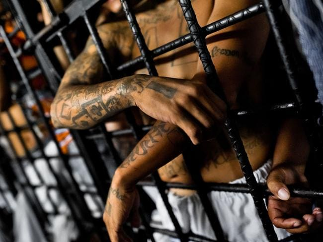 The Mara Salvatrucha gang members are seen behind bars. Picture: Jan Sochor.