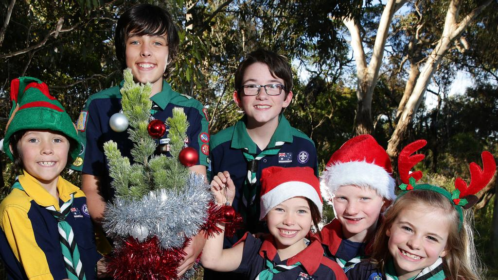 Ocean Grove Scouts Tristan McVilly, Mason McVilly, Alex Harper, Juliette McVilly, Lucas Pearsell and Amy Harper are selling Xmas trees on Dec 3 and 10. Picture: Peter Ristevski