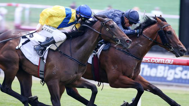 Oohood, left, finished third to Written By in the Blue Diamond. Picture: Michael Klein