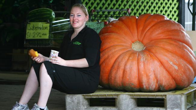 A large Atlantic Pumpkin at Village Greens at Brunswick Heads. Picture: News Corp Australia.