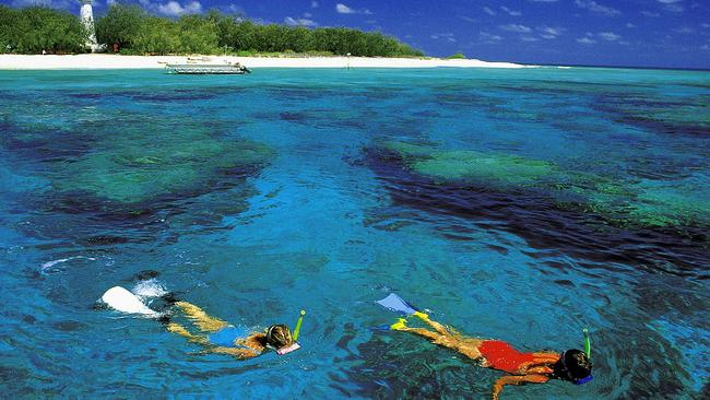 Snorkellers explore the reefs along the shores of Lady Elliot Island, on the Great Barrier Reef. Picture: Stacey Morton/Tourism and Events Queensland