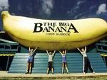 <p><strong>THE BIG BANANA<br /> Coffs Harbour, NSW</strong><br /> <br /> A major tourist attraction for the costal town of Coffs Harbour since 1964, The Big Banana stands at five metres high, is 11 metres long, and deserves a spot on this list because it was Australia's first 'big thing'.<br /> <br /> Picture: AP</p>