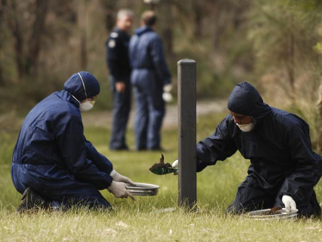 Police forensic officers at the scene in Kings Park where Corryn Rayney's body was found.