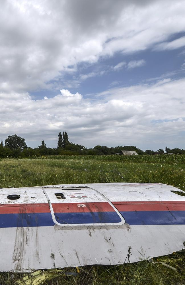 Scattered remains ... A piece of the wreckage of the Malaysia Airlines flight MH17 is pictured in a field near the village of Grabove, in the region of Donetsk.