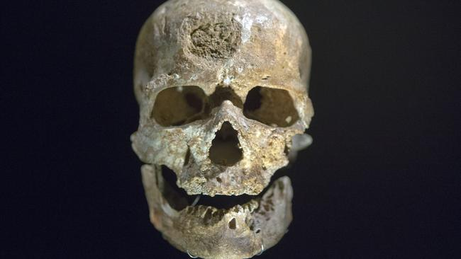 Ancestors ... The 28,000-year-old skull of a Cro Magnon, also known as 'The Old Man', found in Dordogne, France. Picture: AP/Francois Mori
