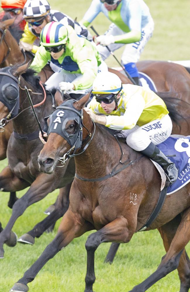 Goulburn and Quirindi will host thoroughbred racing on Monday afternoon in New South Wales. Picture: Jenny Evans