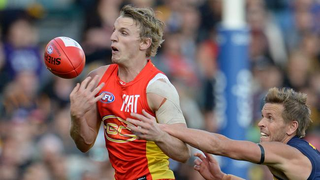 McKenzie says the Suns can match it with the Cats. Photo: Daniel Wilkins