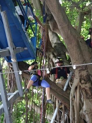 """This is very unusual for an adult to be stuck in a tree"" ... The 23-year-old gets in a harness and pff the branch she was clinging tightly to. Picture: Miami Fire Rescue"
