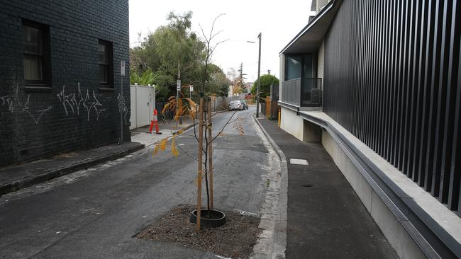 Port Phillip Council was asked to fix a pothole in the middle of a street in St Kilda but planted a tree instead. Picture: George Salpigtidis