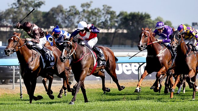 Real Surreal, white cap, bursts through the middle on the way to winning the Magic Millions Classic. Picture: Luke Marsden