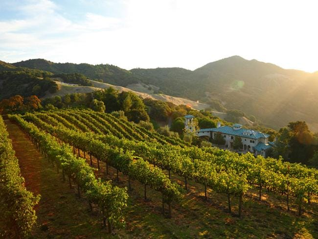 The stunning view overlooking Robin Williams' vineyard.