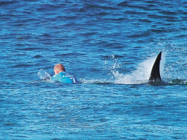 Australian surfer Mick Fanning being attacked by a shark during the Final of the JBay surf Open. Picture: World Surfing League/AFP