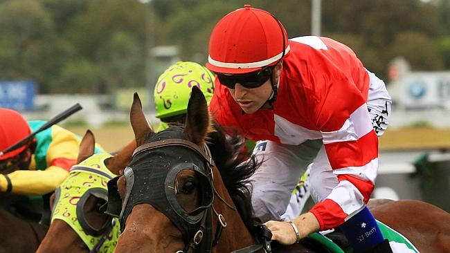 Nathan Berry wins race 2 on Hot Commodity during Randwick midweek races on the Kensington track. pic Mark Evans
