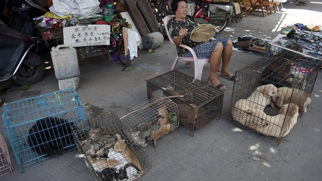 A woman sells dogs and cats by a street in Yulin, ahead of Yulin's Dog Meat Festival. Picture: AFP