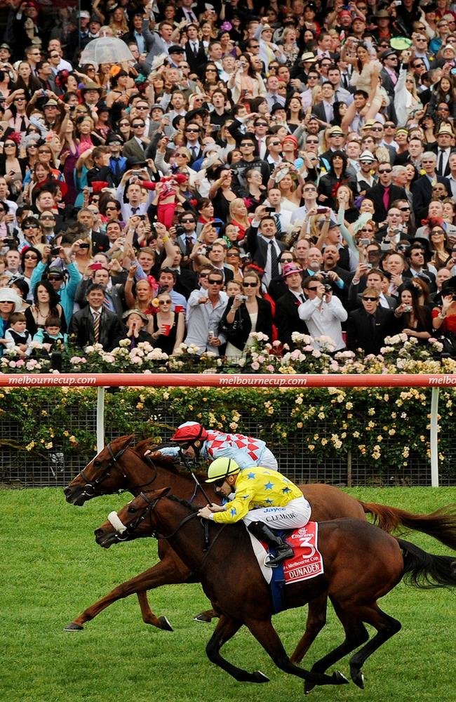 Horse Racing Terms Phrases