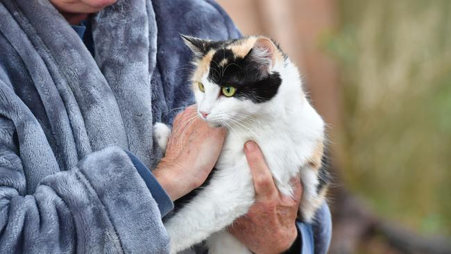 Debra Vines with one of her cats. Picture: AAP/Keryn Stevens