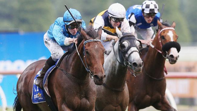 Grand Dreamer relished the heavy conditions to win the Ballarat Cup.