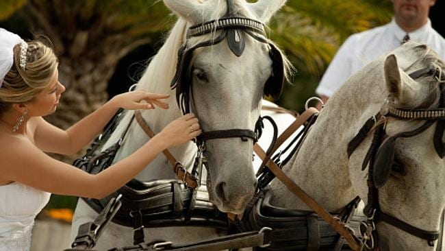The solo bride even arrived on a horse and carriage. Picture: Thinkstock.