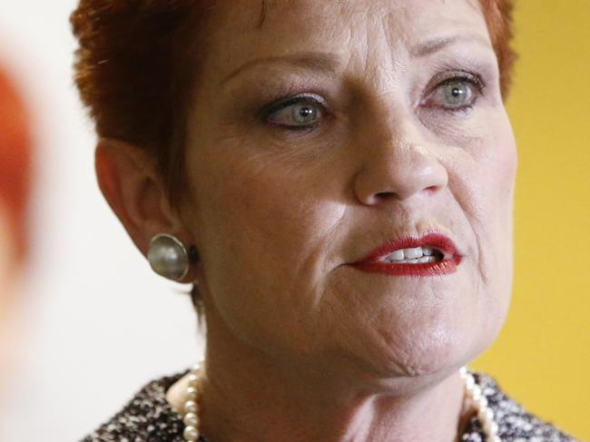 """One Nation leader Senator Pauline Hanson speaks to the media on the sidelines of the One Nation Queensland Annual General Meeting at the Convention Centre, Brisbane, August 24, 2017. Pauline Hanson wants to build a """"strong foundation"""" for her One Nation party, which is holding its annual meeting in Brisbane. Ms Hanson addressed party members and supporters on Thursday and reminded them she was in control of the party and its direction. (AAP Image/Regi Varghese) NO ARCHIVING"""