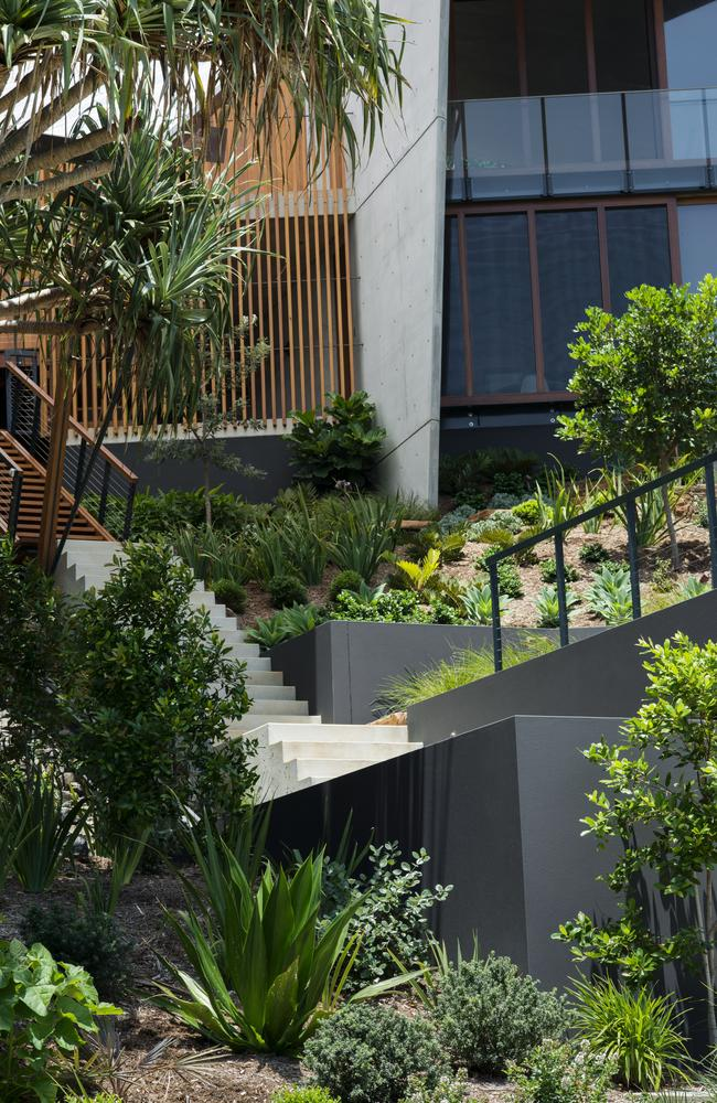 Byron bay garden design blends with surrounding bush landscape for Plants that need little maintenance
