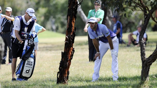 Dustin Johnson looks for a way out of the bushes on the 7th. Picture: Daniel Wilkins