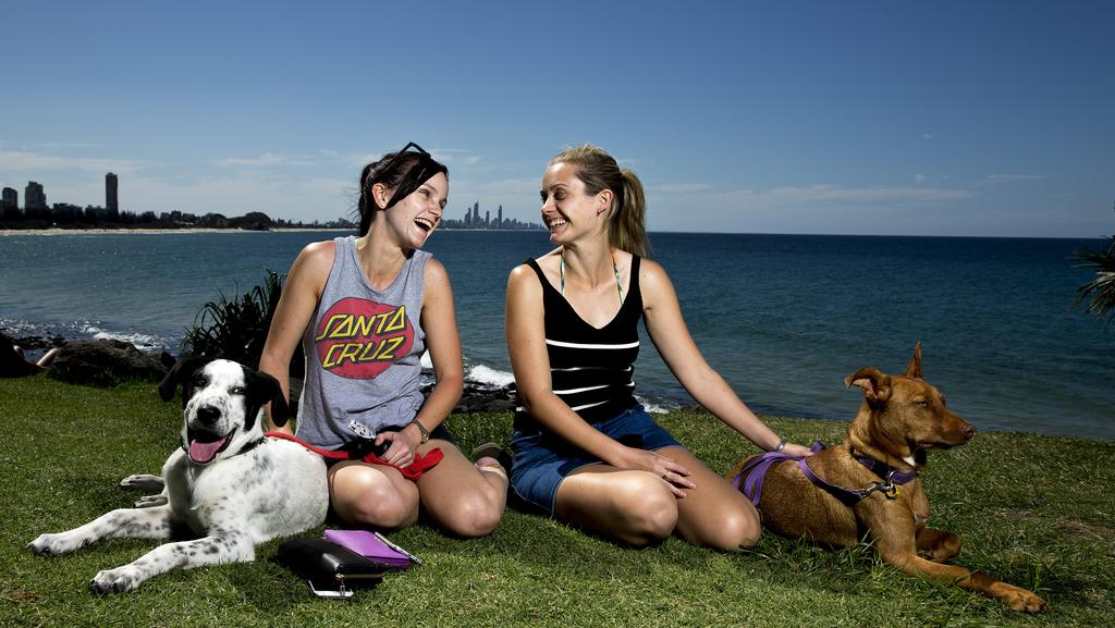 Leah Connoll with her dog Trevor and Tara Connolly with her dog Edie, enjoying the sun at Burleigh Beach. Photo: Jerad Williams