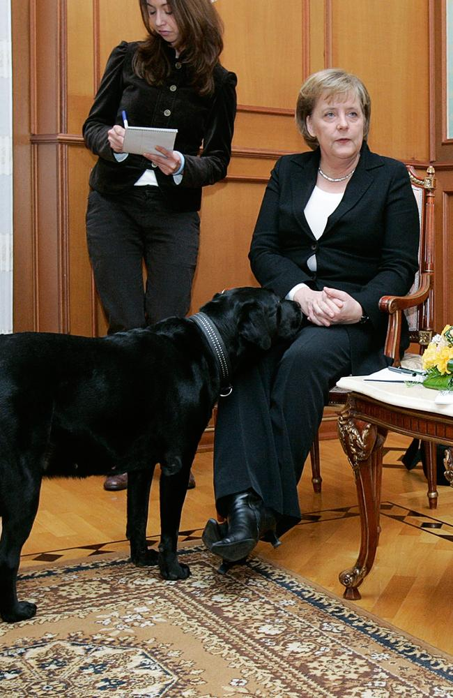 Chancellor Merkel is not amused by the appearance of Putin's black dog at a meeting in Sochi in 2007. She joked about it at the time and Putin later apologised and said he did not know she was afraid of the animals. Picture: PRESIDENTIAL PRESS SERVICE / ITAR-TASS