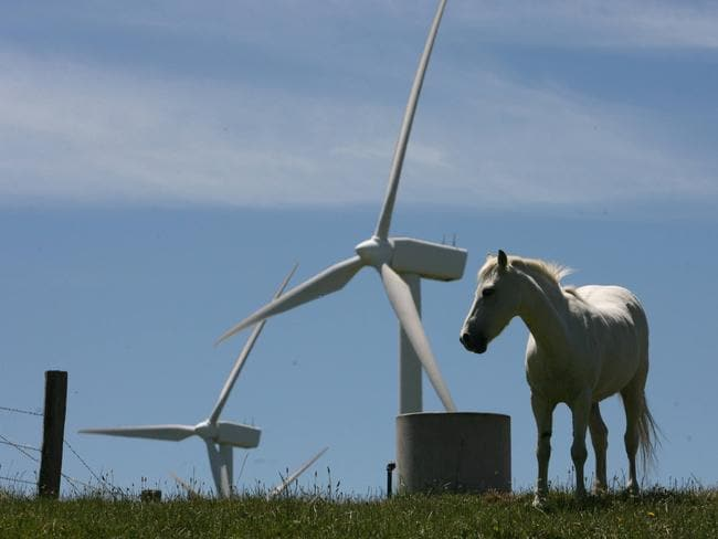 A waste of resources? Wind turbines at the Toora Wind Farm in South Gippsland, Victoria.