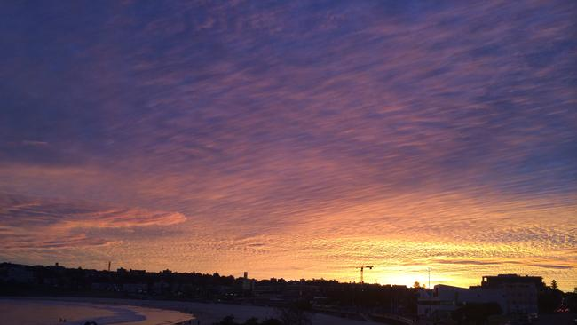 Sunset over Bondi. Picture by reader Cathy Bellenger
