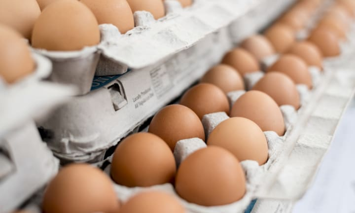 Urgent recall: Popular eggs recalled over fears of salmonella contamination