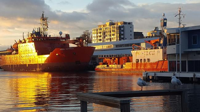 Australiian icebreaker Aurora Australis parked behind L'Astrolabe at Princes Wharf in Hobart. Picture: LIBBY SUTHERLAND