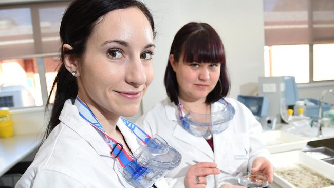 Science students Michelle Ryan and Naomi Chircop at the University of Western Sydney, Hawkesbury campus / Picture: Peter Kelly