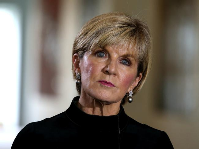 Foreign Minister Julie Bishop has singled out Labor frontbencher Penny Wong as being the instigator behind New Zealand's probe into Barnaby Joyce citizenship status. Picture Kym Smith