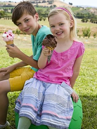 For the next two weeks, the Yarra Valley Chocolaterie and Ice Creamery is a holding an ic