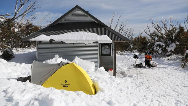The two friends' tent at Michell Hut on Mt Bogong.