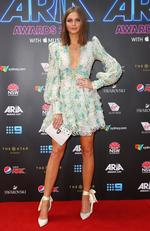 Ksenija Lukich arrives on the red carpet for the 31st Annual ARIA Awards 2017 at The Star on November 28, 2017 in Sydney, Australia. Picture: Getty