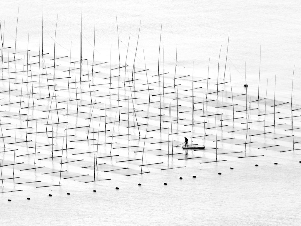 """A fisherman is farming the sea in between the bamboo rods constructed for aquaculture off the coast in southern China."" Picture: Tugo Cheng, Hong Kong, Shortlisted, Open Competition, Travel, 2016 Sony World Photography Awards"